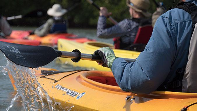 Kayaking Sea School: Gainesville